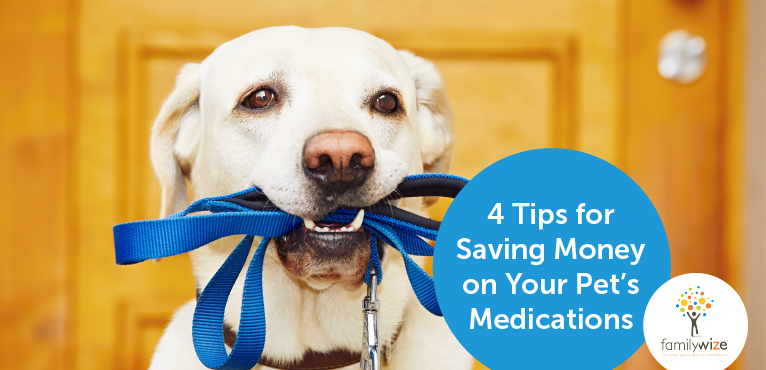 4 Tips for Saving Money on Your Pet's Medications