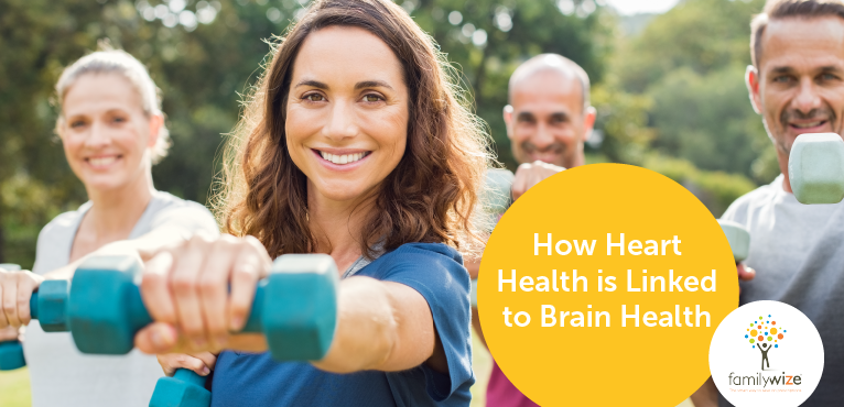 How Heart Health is Linked to Brain Health